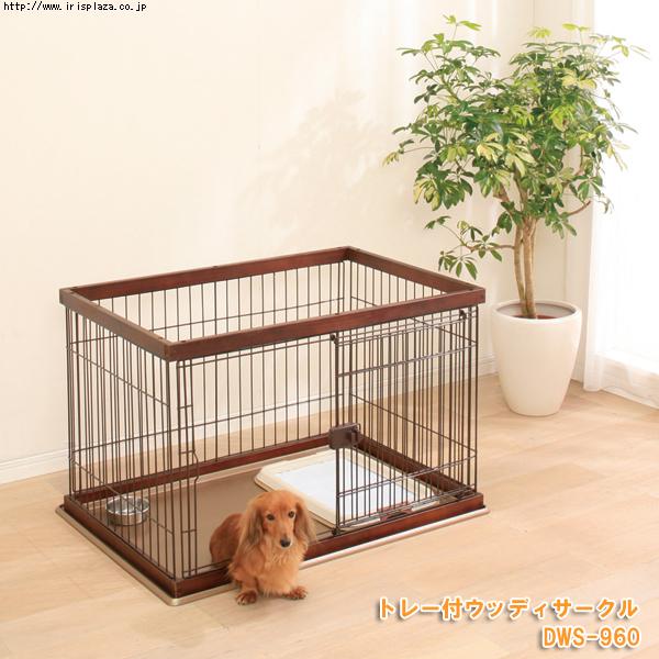 トイプードルのケージを探す【小型犬用ケージ・サークルは、どの程度の大きさが必要か?】