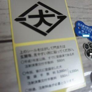 DSC02777-546x363