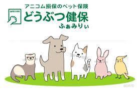 【ペット保険どこがいい?①】全国の動物病院と提携のあるアニコム損害保険