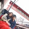 愛犬連れの旅の思い出に!浅草の人力車に乗ってきました