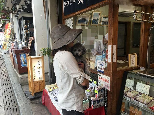 わんこと一緒に江の島散歩。江の島の見どころと犬同伴可能なレストランやカフェマップ