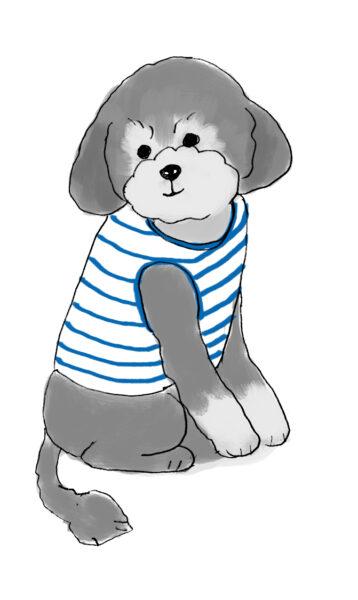 ココナラで愛犬の似顔絵をワンコインで描いてもらいました