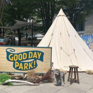 みなとみらいグランモール公園のイベント「GOOF DAY PARK!」