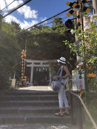 愛犬と鎌倉江の島七福神巡り【御霊神社】江ノ電と元保護猫名誉宮司のウッシーさん