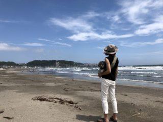 由比ガ浜を愛犬と楽しむ!海の家と犬連れルール