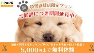 トリミングサロンの口コミを書いて5000円まで無料体験キャンペーン。期間延長中