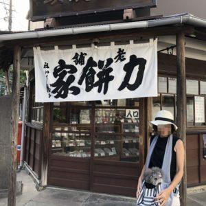 300年以上続く老舗和菓子屋【力餅家】鎌倉江の島七福神巡りのお土産に!